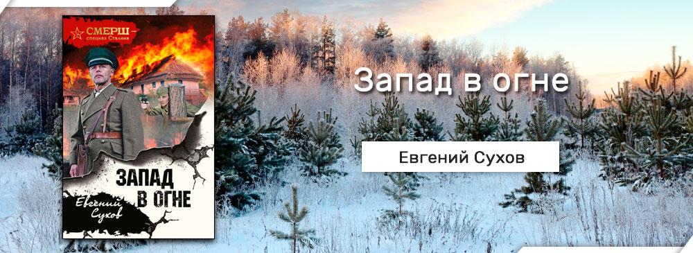 Запад в огне (Евгений Сухов)