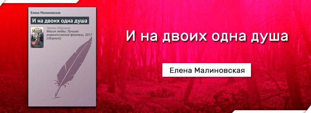 И на двоих одна душа (Елена Малиновская)